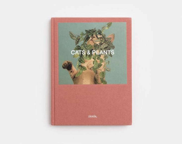cats and plants book 2
