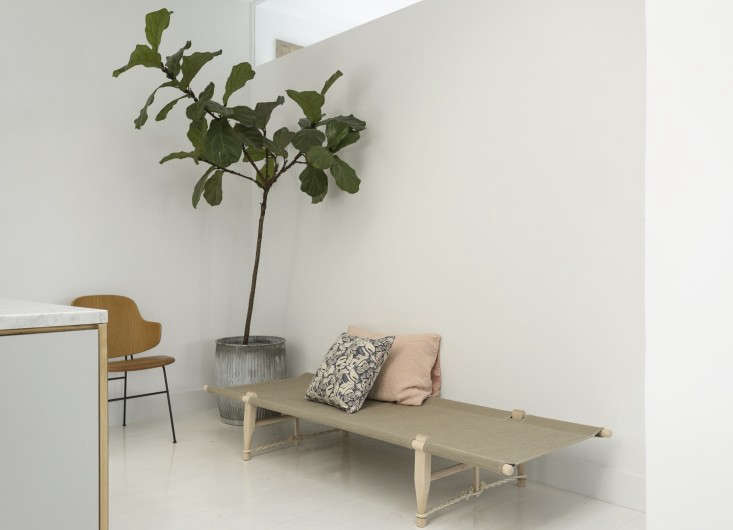 the fiddle leaf fig tree stands in an antique french zinc planter (from fil de  16