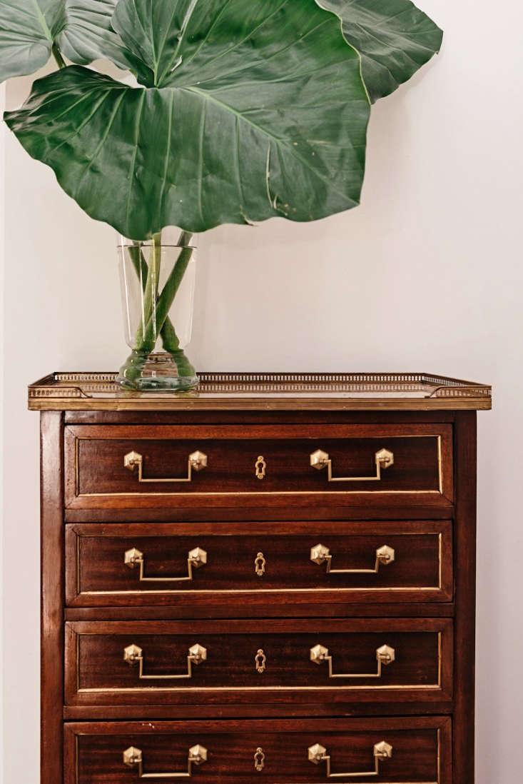 henry hall hotel new orleans dresser leaves