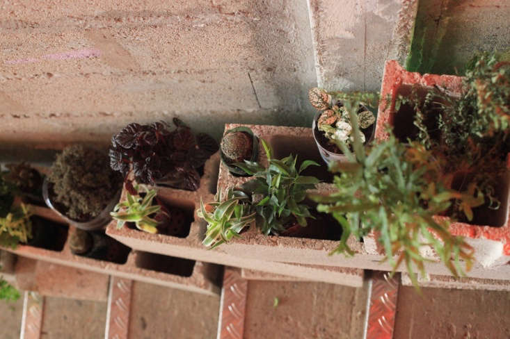 cinder blocks, transformed into planters, line the entry stairwell. 22