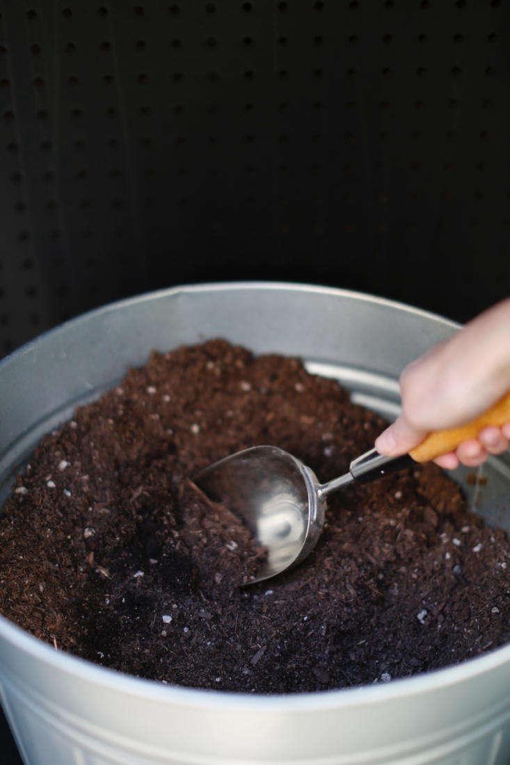 michelle stores potting soil in a lidded trash bin beneath the shelf. its scoop 17
