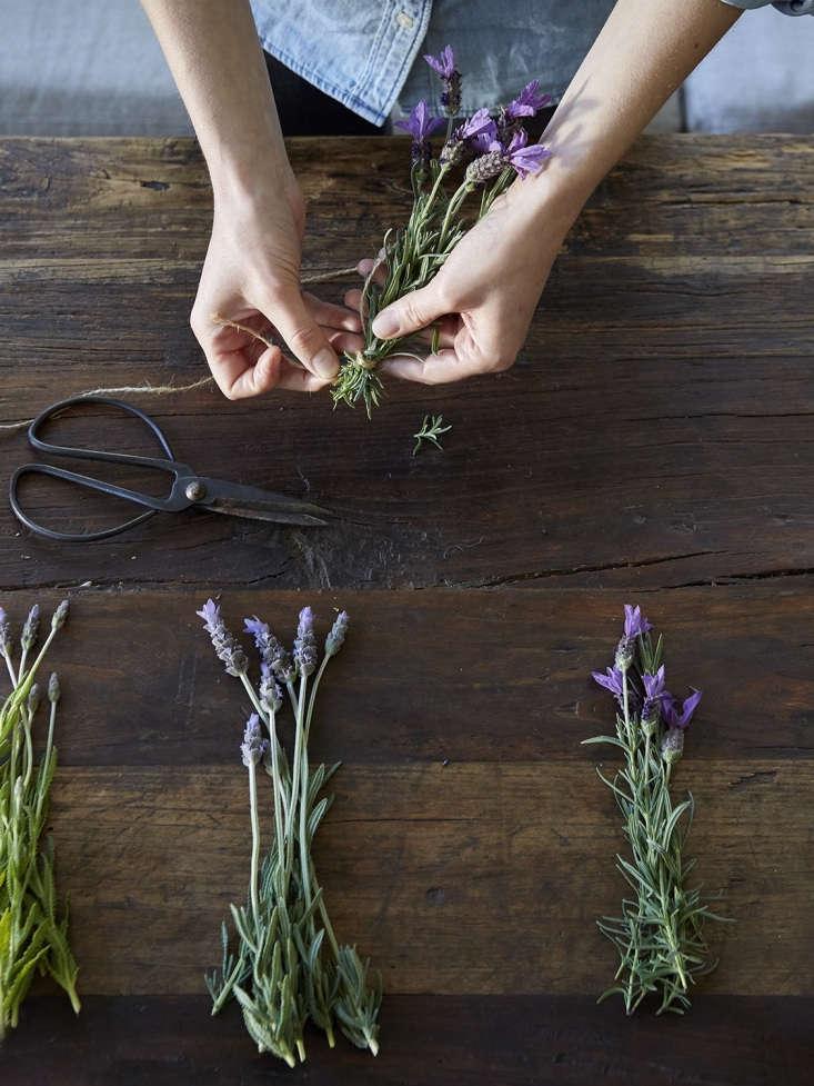 plus, artful, diy teas to go inside. seetisanes: easy teas you can grow, with 11