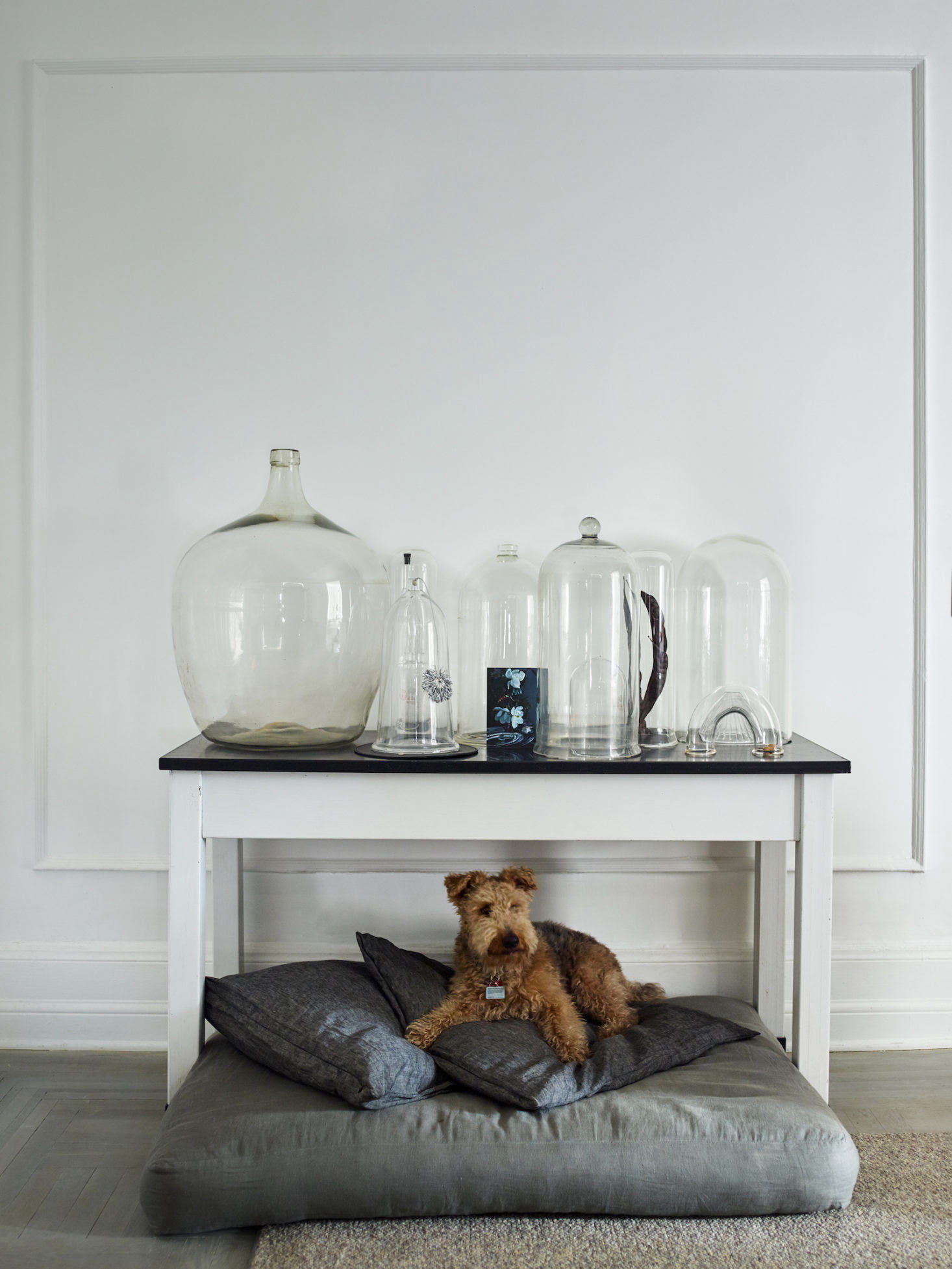 Rusty relaxes on his cushioned perch. Above him is a collection of cloches (and one giant glass jug), all sourced from various junk shops in the UK; the table on which they sit is an eBay score. The hardwood floor throughout the home is original to the apartment, but Axe and Hays had it sanded, popped (a process that opens the grain in wood flooring), primed with lye (which further enhances the grain), then stained with white oil for a washed-gray look.