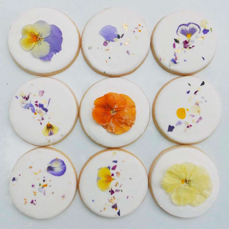 margot takes a look at the botanical confections made by a dutch model incand 11