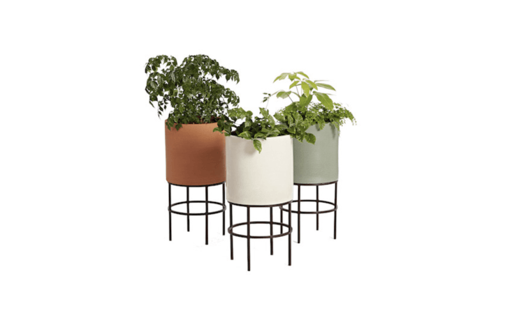 ten takes on a classic: the midcentury modern cylinder planter, first designed  10