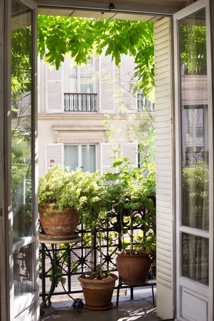 Trending on Gardenista Enchanted Gardens InHow to Garden Like a Frenchwoman: \10 Ideas to Steal from a Paris Balcony, the editors dropped in on actress and scriptwriter Diane Valsonne&#8\2\17;s \10th Arrondissement apartment to get inspiration from her charming balcony. Photograph by Mimi Giboin for Gardenista.