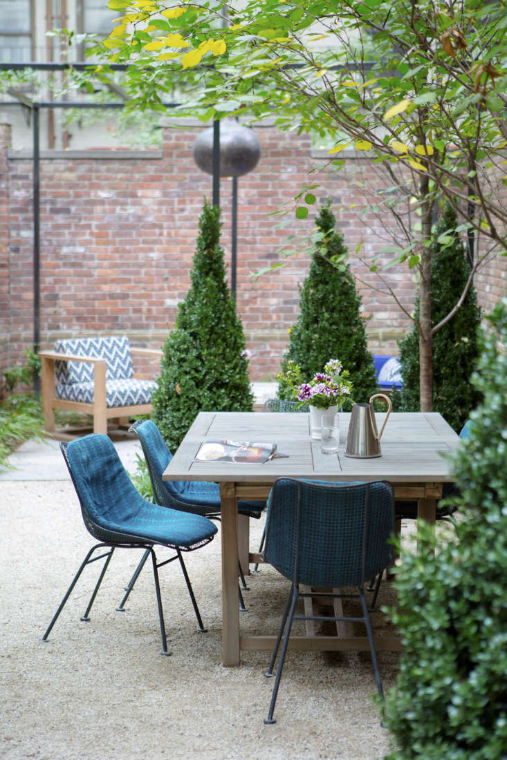 a townhouse garden with a bolt of blue: fawn galli&#8\2\17;s upper east sid 9