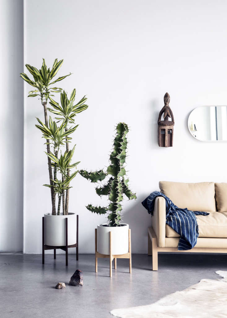 Shoppers Diary New Furniture Designs from Home Enthusiasts TRNK Los Angeles—made Case Study Planters from Modernica in walnut and ash bases.