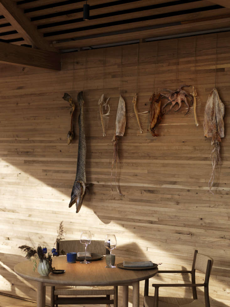 Dried sea creatures and fish skeletons line the walls. Photograph by Jason Loucas, courtesy of Dinesen.