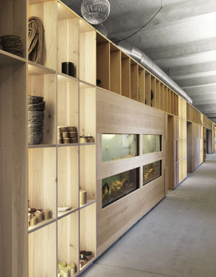 Fish tanks and groupings of tableware in the cubby spaces of the 70-meter-long (about 0 feet) wooden cabinet and shelving system in Dinesen Douglas.