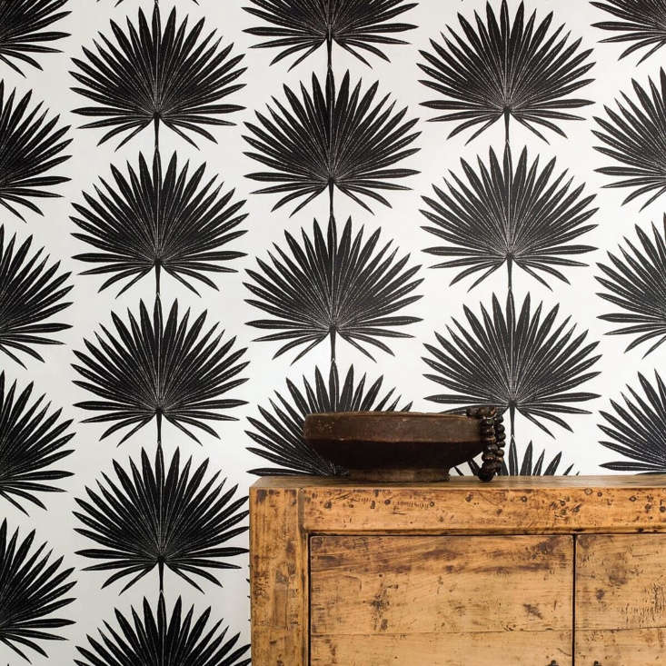 another dark take: structured palmetto wallpaper by atlanta, georgia based clay 16