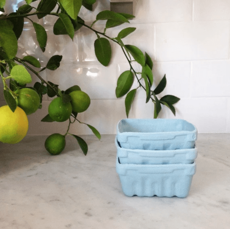 annie loves the look of simple blue green paper berry boxes out on the counter. 14