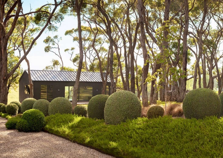 and, with only a strand of native eucalyptus as inspiration, landscape architec 11