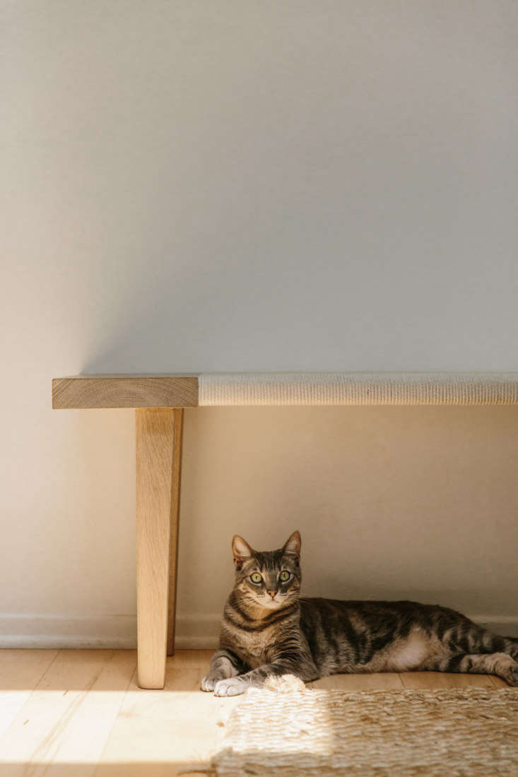 the oak day bench in the tiny, 300 square foot venice, california, apartment of 9