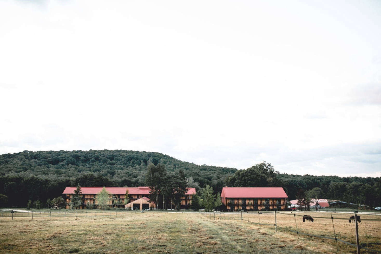 Horses are visible from just about every vista. For more details and reservations, go to Le Barn.