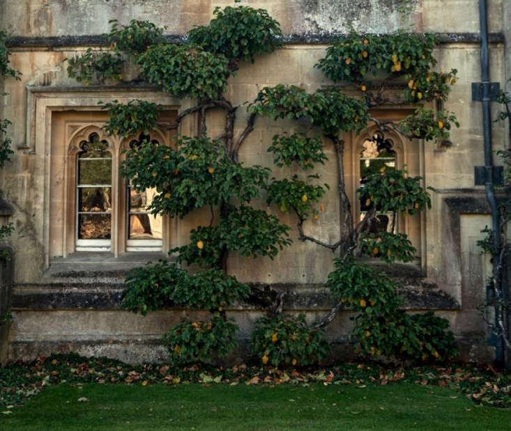 and, a walk around the grounds of magdalen college for a look at the bitterswee 11
