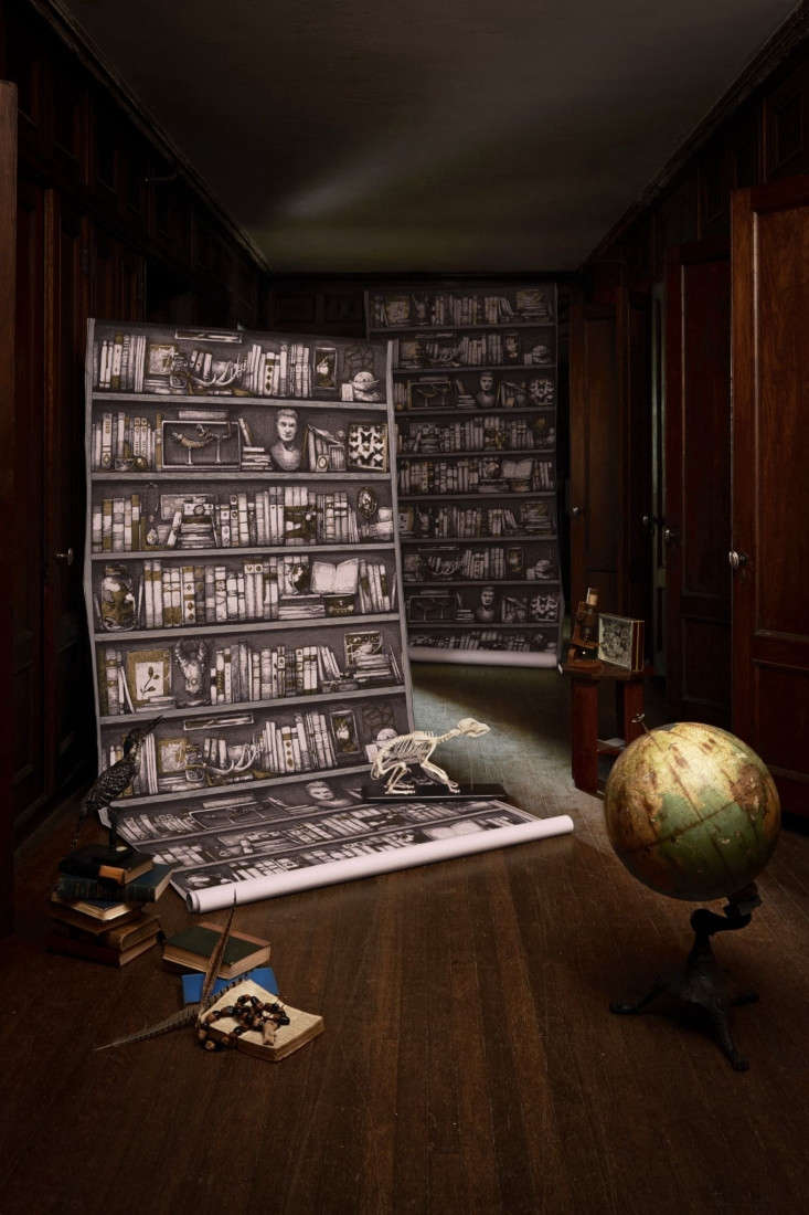 Wunderkammer A New and Exotic Wallcovering Line from Zak  Fox portrait 3_22