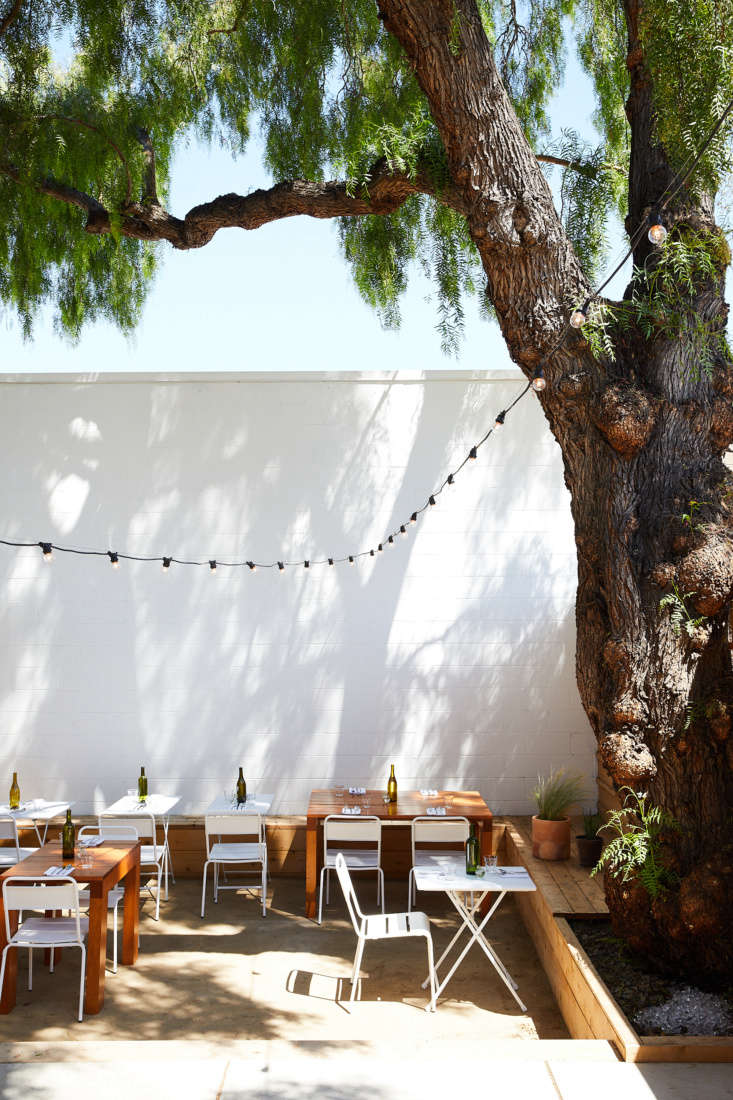 East Meets West Inside Range Life in California The restaurant&#8\2\17;s back patio was designed by California firm Terremotoaround a \100 year old pink peppercorn tree. It&#8\2\17;s framed by low, board and batten cedar fences; the tables were made by local woodworker Travis Cutright.