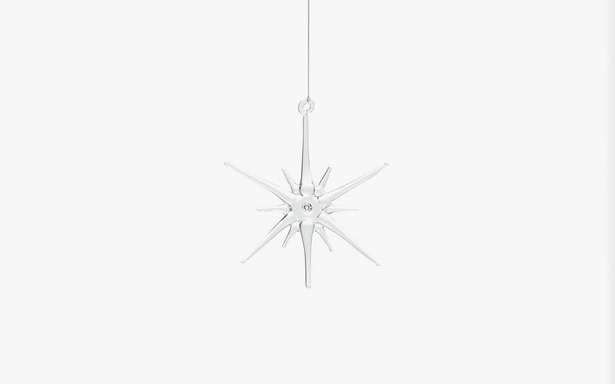 Justine is admiring this surprisingly well-priced glass Star Ornament from ABC Carpet & Home. &#8