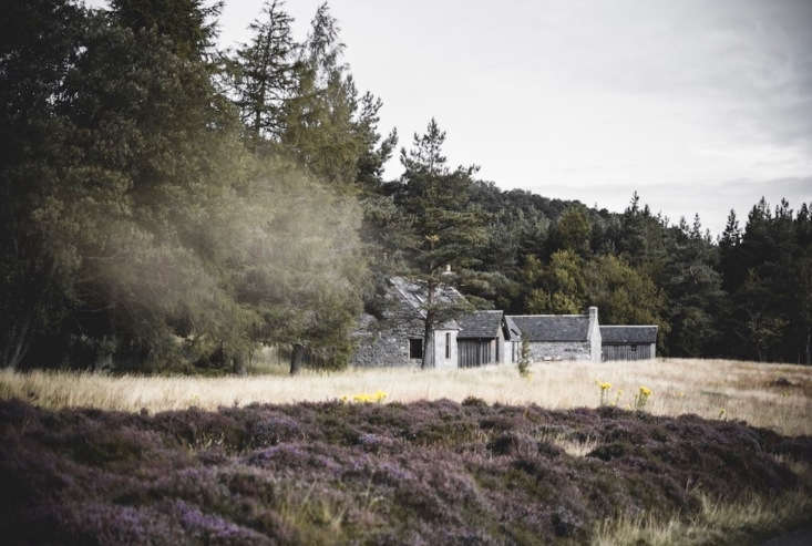 Kennels Cottage, tucked into a clearing in Cairngorms National Park.