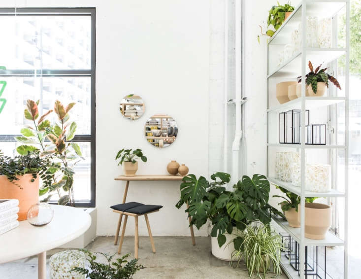 the gardening corner of the store. at right are the simple mirrored lanterns by 15