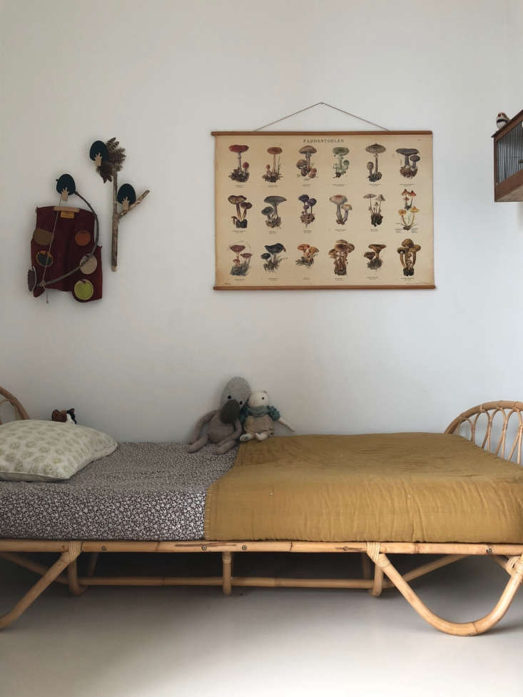 A vintage botanical chart hangs in Hannes&#8
