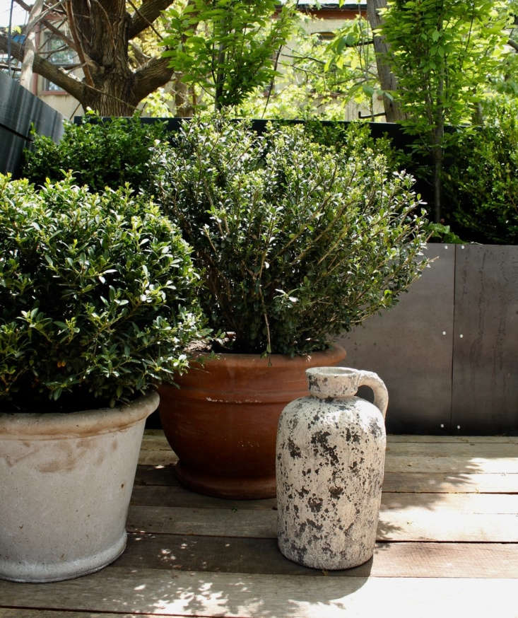 Over on Gardenista, of-the-moment landscape design trio Manscapers gave their best advice for designing a city garden. Hear what they had to say inManscapers: 5 Tips for Designing a City Garden, from an Of-the-Moment Landscape Design Firm. Photograph courtesy of Manscapers.