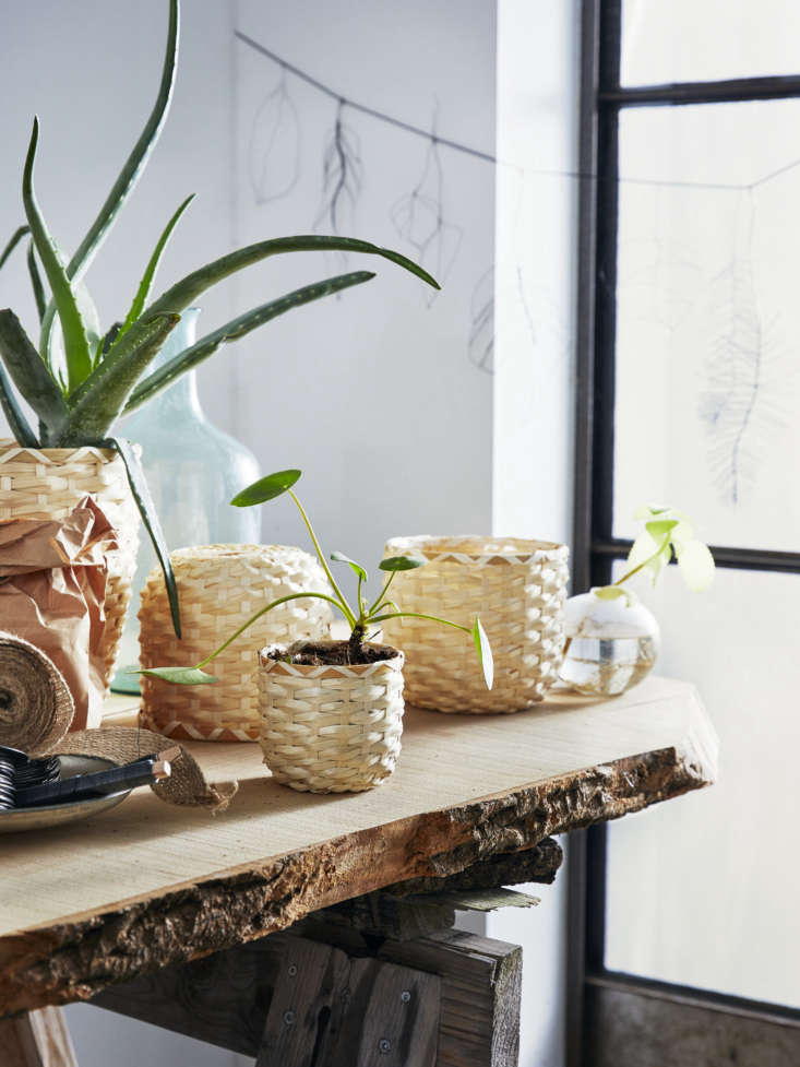 the kaffeböna series of plant pots are also made of bamboo, woven in a small v 10