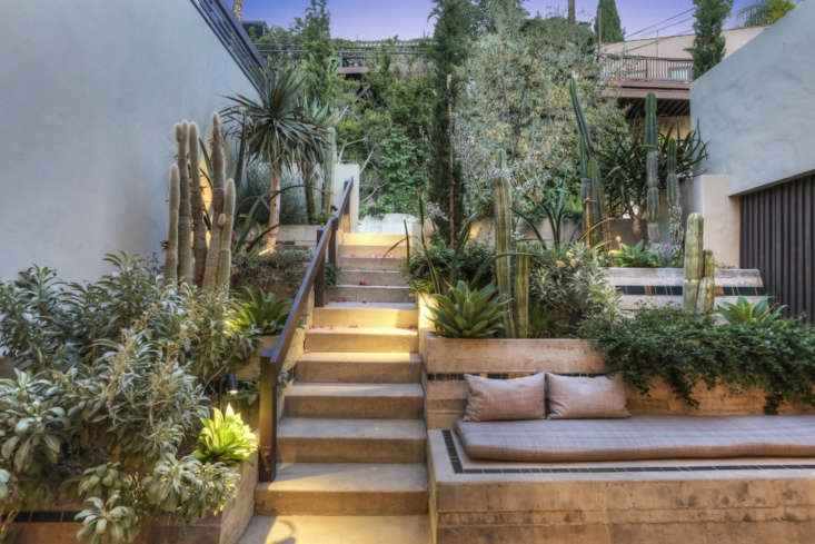 landscape design firm terremoto filled the courtyard with drought resistant and 18
