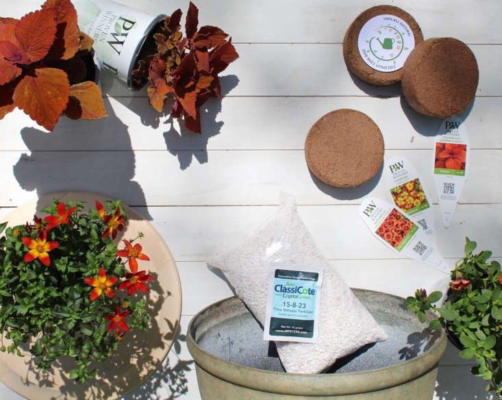 Seasonal plants, soil, plant food, a container, and care instructions are all included in the package.