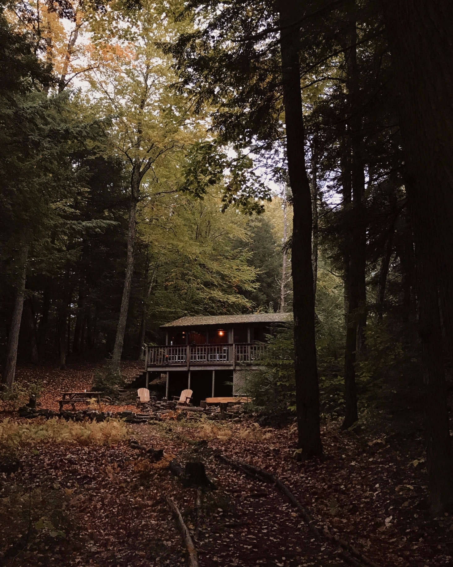 The cabin, tucked in the New Hampshire woods.