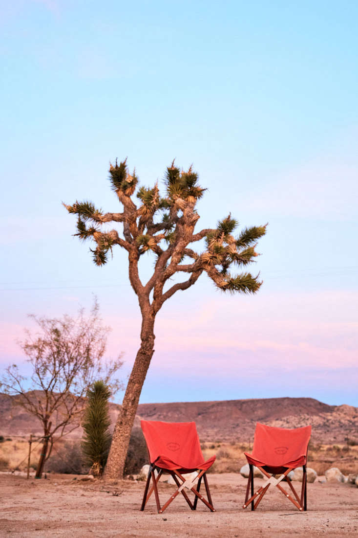 a joshua tree overlooks camp chairs set out for sunset views. 17