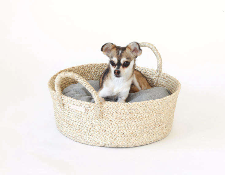 Faunamade modern basket bed for cats and dogs with chihuahua and gray flannel cover