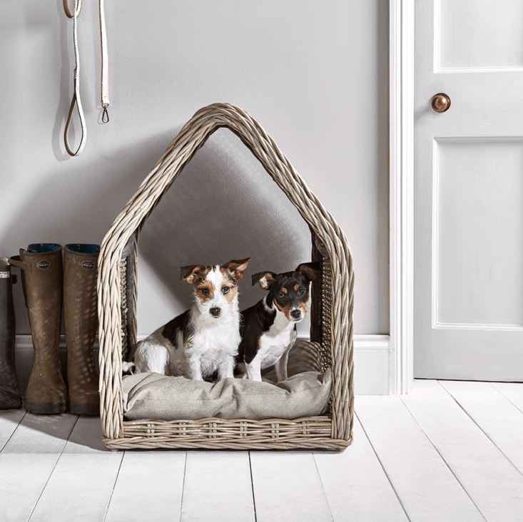 cox & cox, uk purveyor of deluxe pet beds, offers several wicker options: a 21