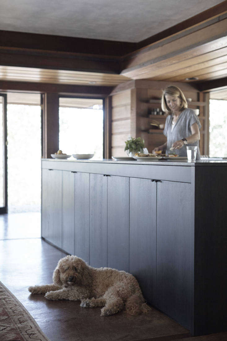 janet hall petal house kitchen olive