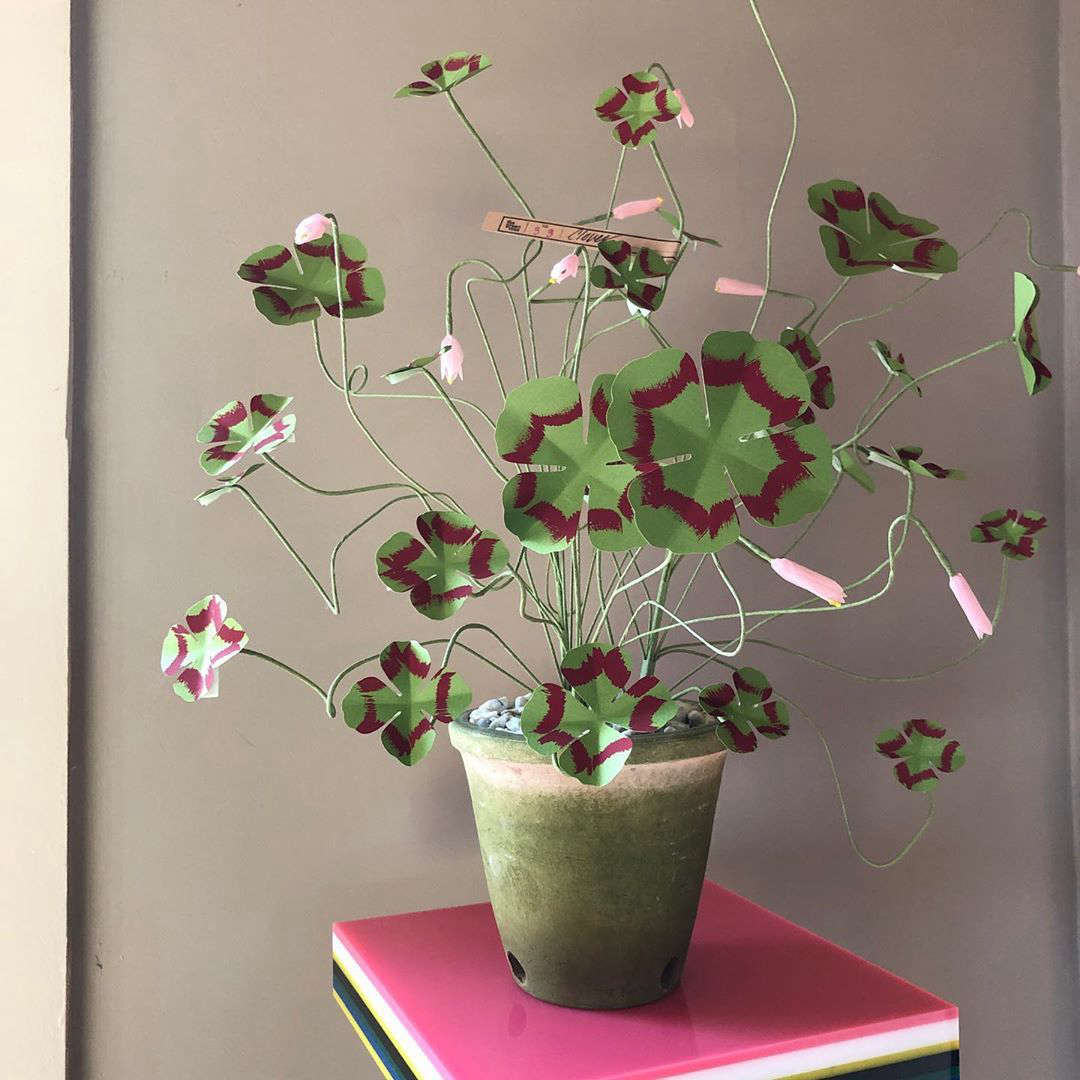 Margot has been eyeing a pot of paper flowers from artist Livia Cetti of the Green Vase; her work is available from John Derian in NYC; contact the shop directly to see what they have in stock. (And see Margot&#8