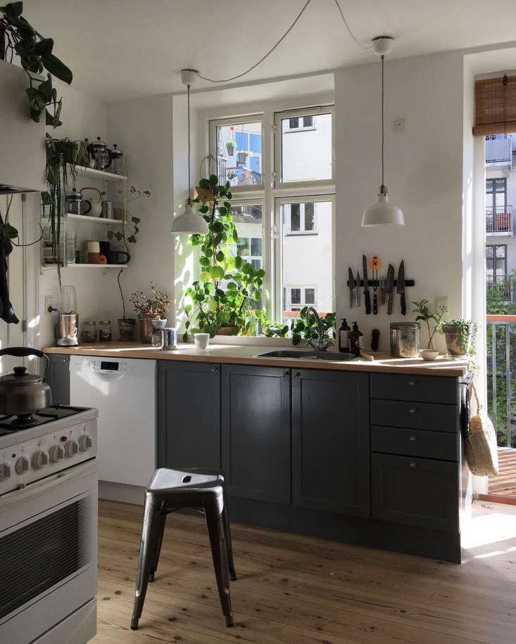 The small and sunny kitchen, with plain wood floors, butcher-block countertops, a newly installed balcony, and plenty of houseplants. &#8