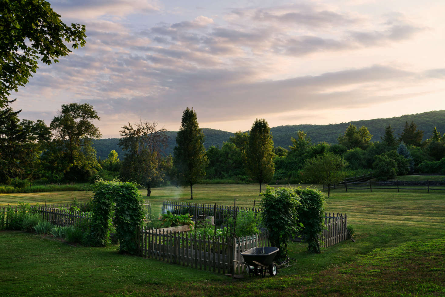 Two ivy-covered trellises lead to the family&#8
