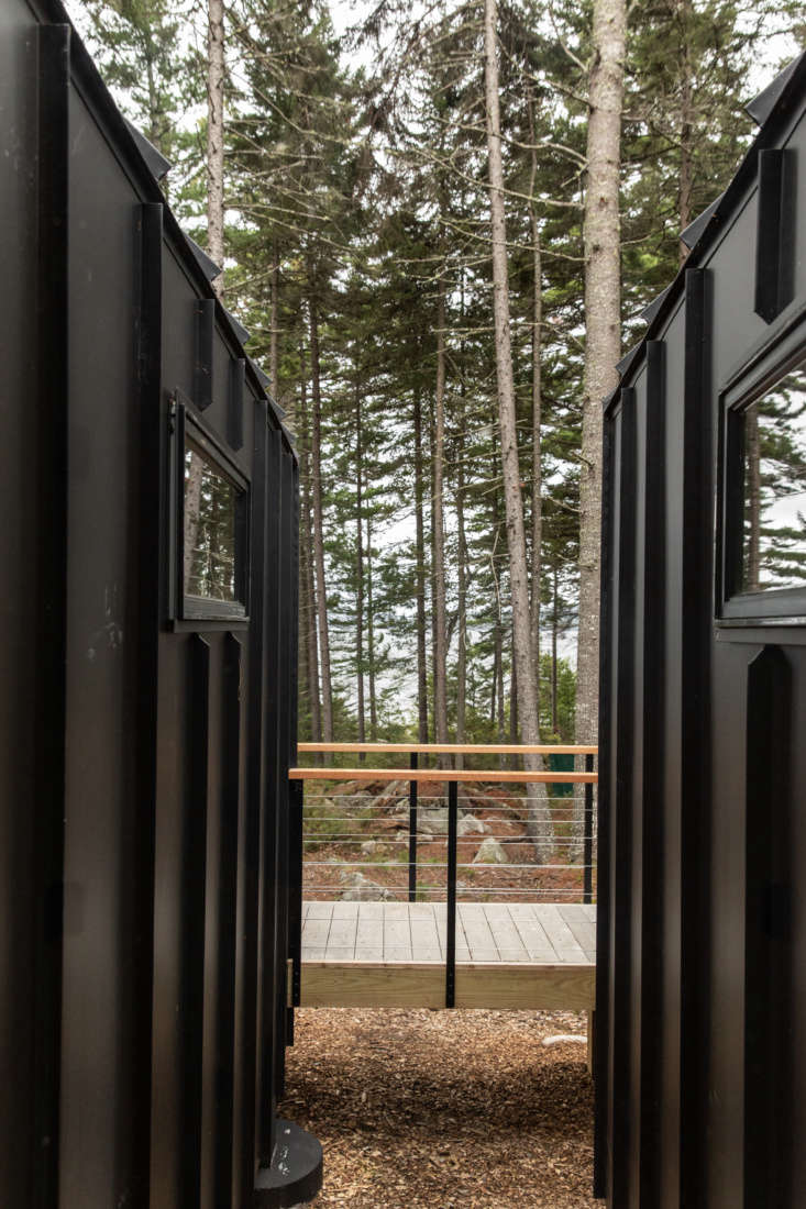 A breezeway area between the two rooms frames a view of the pines.