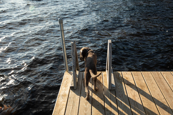 the cabin&#8\2\17;s dock, set for an afternoon swim. 27