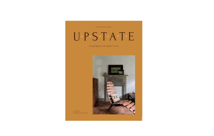 Upstatecomes out October  and is available for pre-order now via Amazon (or look for it from your local bookshop).