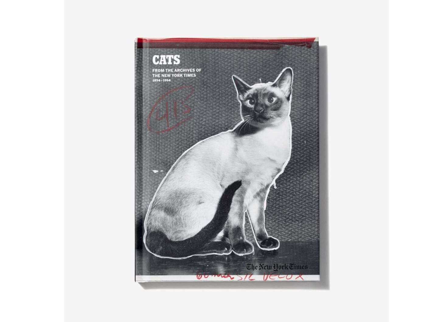 For the cerebral cat, try Cats of the Times, a book filled with stories of kooky felines that ran in The New York Times between 54 and 64. About the tales, says the paper: &#8