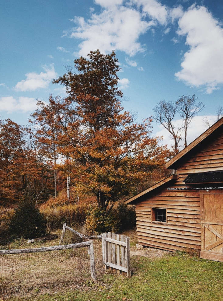 &#8\2\20;the cabin is located in the western part of the catskills, in a ti 9
