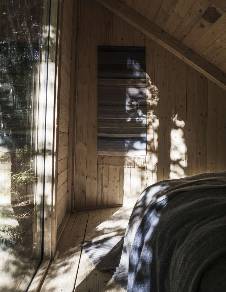 Floor-to-ceiling windows offer views of the forest from every cabin.