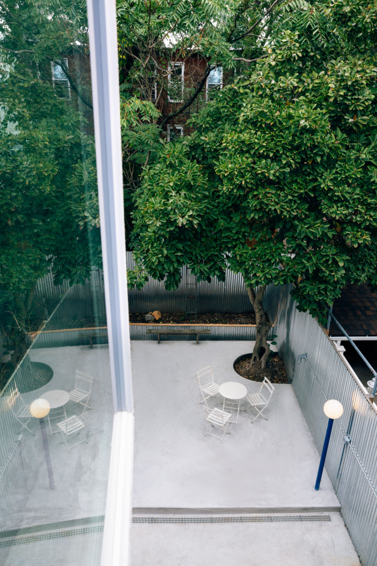 Behind the townhouse is a private patio, which LOT built around an existing magnolia tree and otherwise left spare.