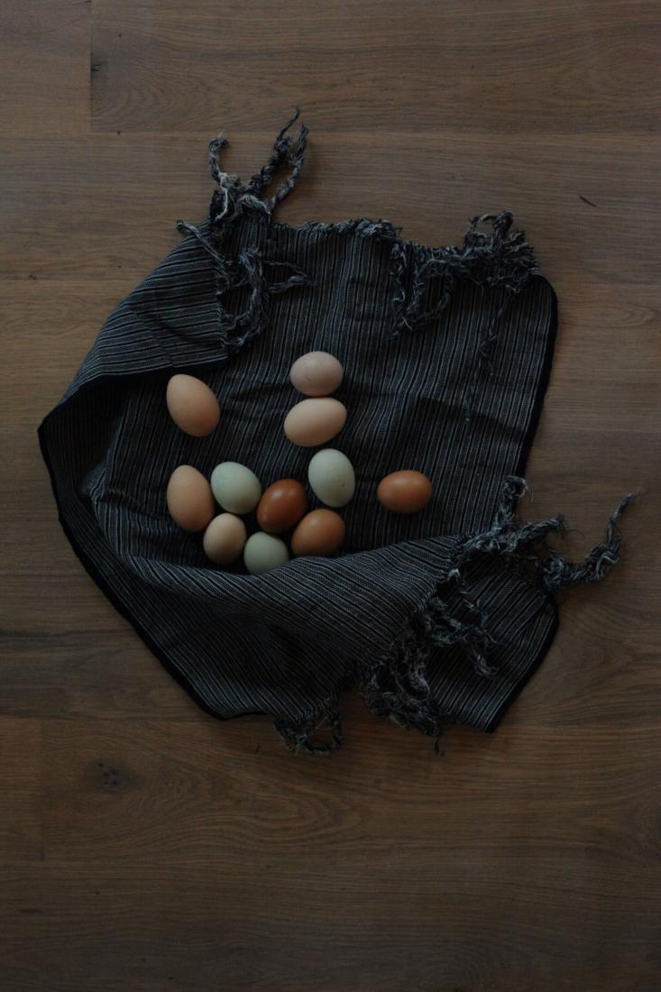 handa textiles tea towel