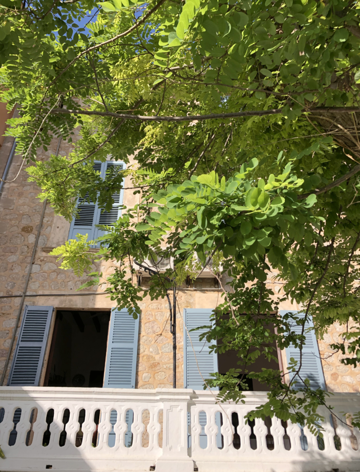 the house as viewed from the garden, with pale blue shutters. &#8\2\20;i&am 9