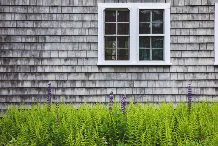 this weathered, shingled maine home has been in jim terry&#8\2\17;s family  9