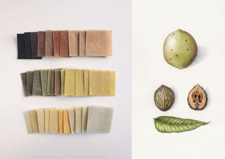 wax atelier colour inspiration