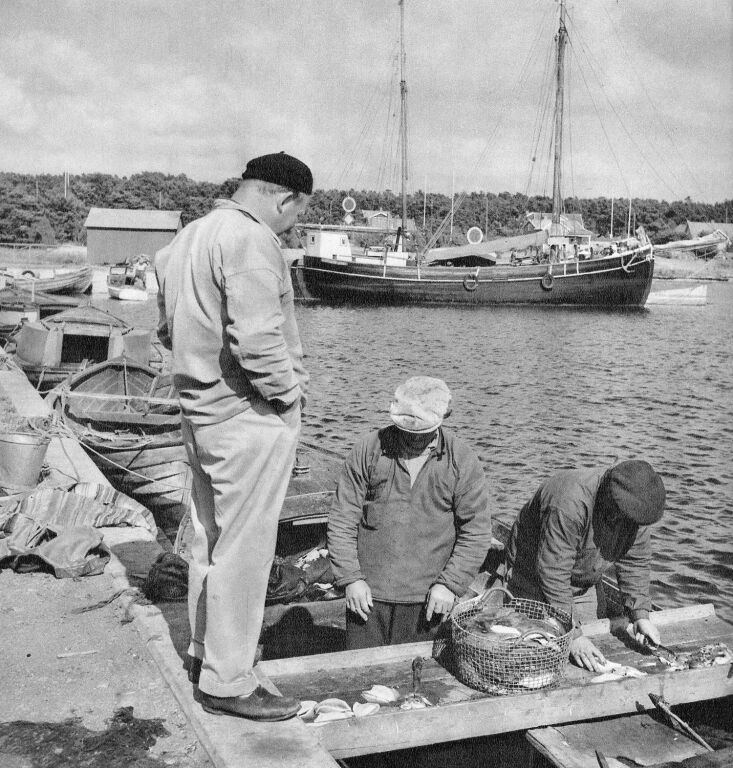 from the archives—a \1947 shot of fishermen in skägganäs, sweden, putting 14